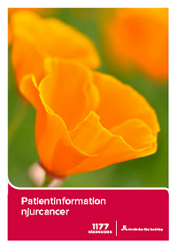 Patientinformation njurcancer